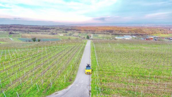 Mit-einer-Drohne-fotografiert-Lea-Tritschler-zum-neuen-Jahr-2020-in-den-Reben