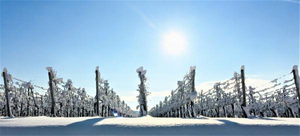 1-Schnee-auf-dem-Vulkan-Und-die-Sonne-steht-fest-ueber-Sonnenwinzerland